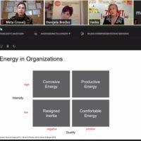 Organizacijska energija.002